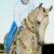 Türkmenistan At Gününü Kutladı