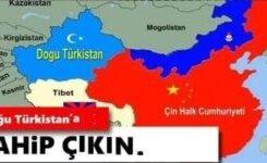Amerika Birleşik Devletleri'nden Çin'e Doğu Türkistan'da Uygulanan Kısırlaştırma Zulmünü Durdurma Çağrısı